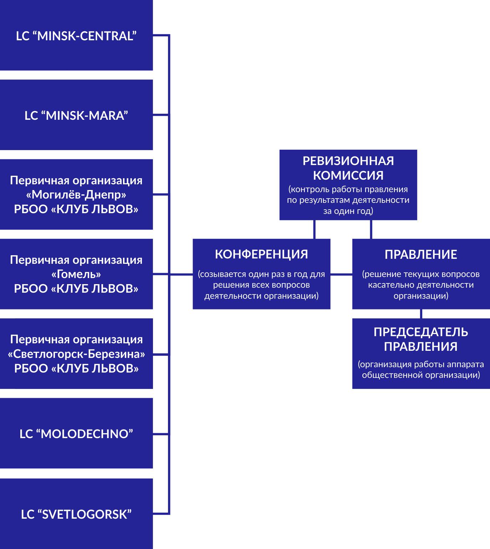 Lions_Belarus_Structure21